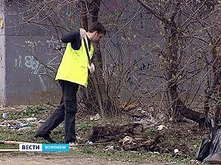 Жители Воронежа вышли на уборку дворов