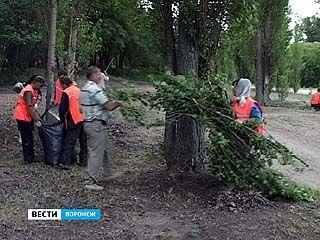 Жители Воронежа вышли на уборку ещё одного сквера