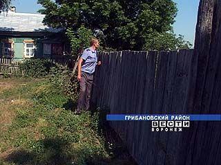 Жительница села Нижний Карачан выращивала в огороде коноплю