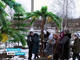 Жительница села Воробьёвка создала во дворе своего дома детский городок