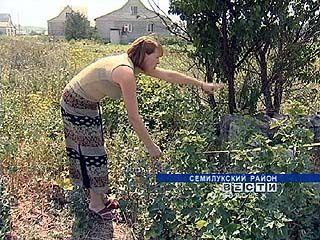 Жительница Семилук оформила участок, и времянка с гаражом ушли к соседям