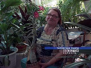 Жительница Таловой уверена - цветы избавили ее от серьезного недуга