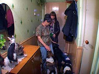 Жительница Воронежа организовала приют для животных в своей квартире