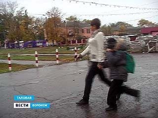 Жительницы Таловой просят органы опеки забрать у матери ребёнка
