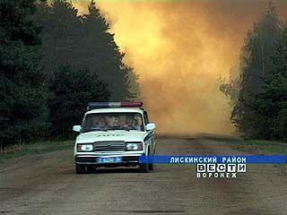 Жителя Лискинского района привлекли к ответственности за лесные пожары