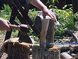 Жителям Аннинсокого района вскоре не придется рубить дрова