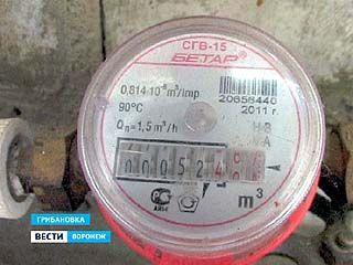 Жителям Грибановки приходится платить за воду по нормативам, даже после установки счетчиков