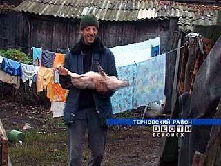 Животновод из Терновского района оформил кредит на развитие подворья