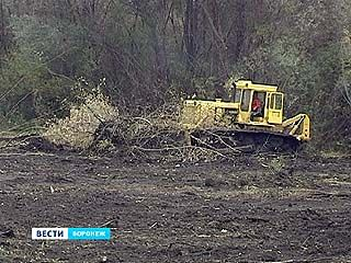 Зловонное лето в Масловке не повторится - реку Тавровку расчистят и углубят