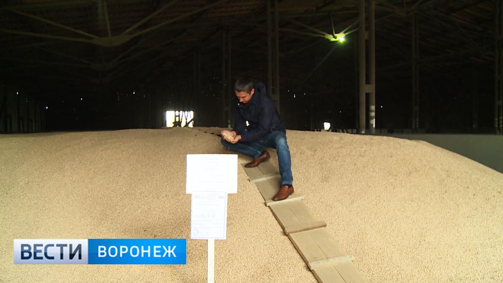 «Землянское». История одного из лучших в Воронежской области семеноводческих хозяйств