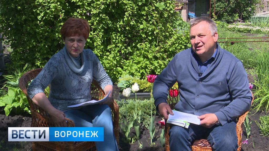 Агрономом Иван Бабин рассказал, как бороться с вредителями капусты