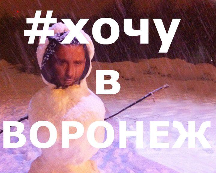 37 снеговиков воронежцев из соцсетей за неделю