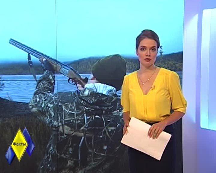 Факты: Популяцию волков в Воронежской области решили сократить
