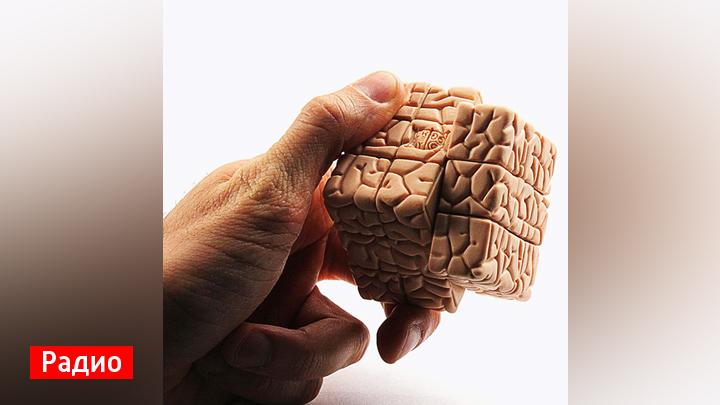 Воронежские филологи пояснили значение выражения «мозги набекрень»