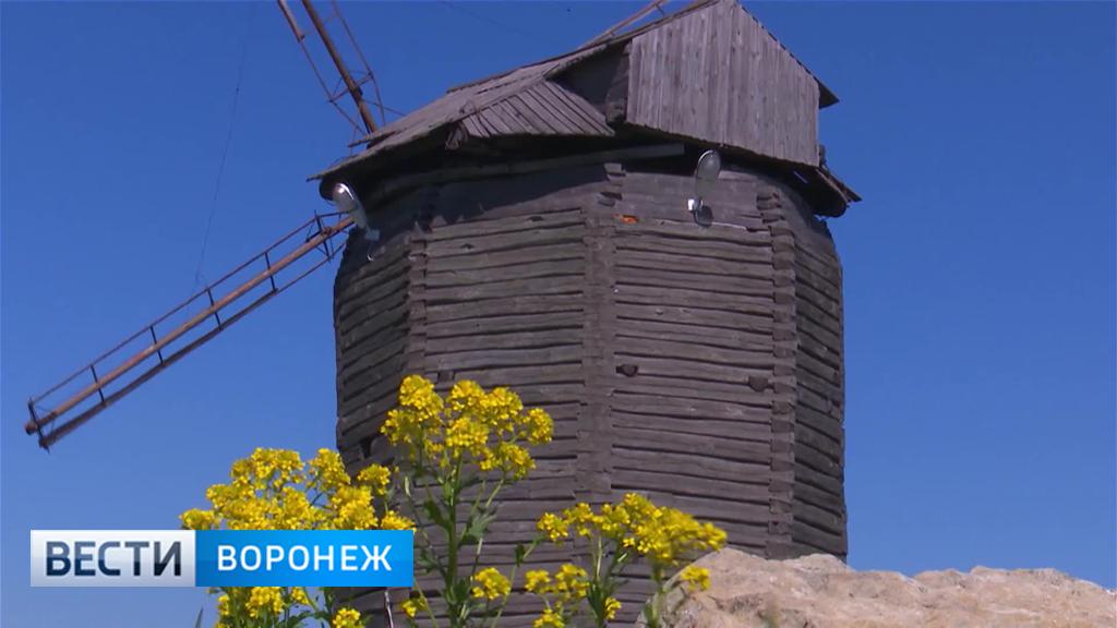 В погоне за ускользающим летом на юг Воронежской области