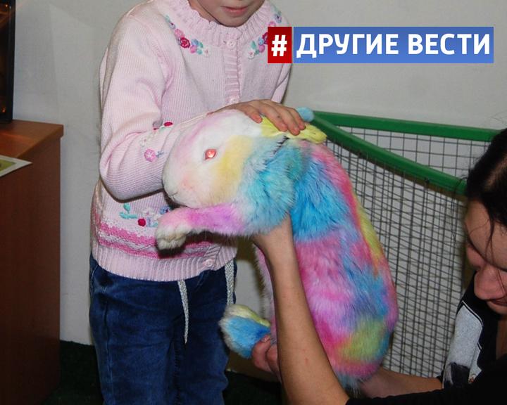 Разукрашенные животные в пензенском контактном зоопарке шокировали россиян