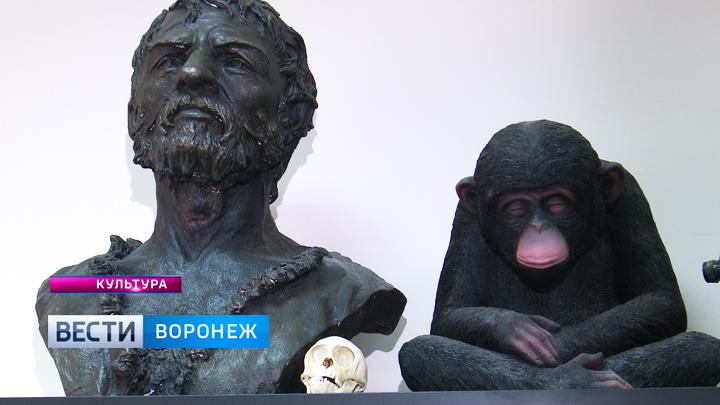 Какие археологические открытия этим летом уже успели сделать жители Воронежской области