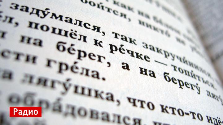 Воронежские филологи рассказали об ударениях при склонении слов