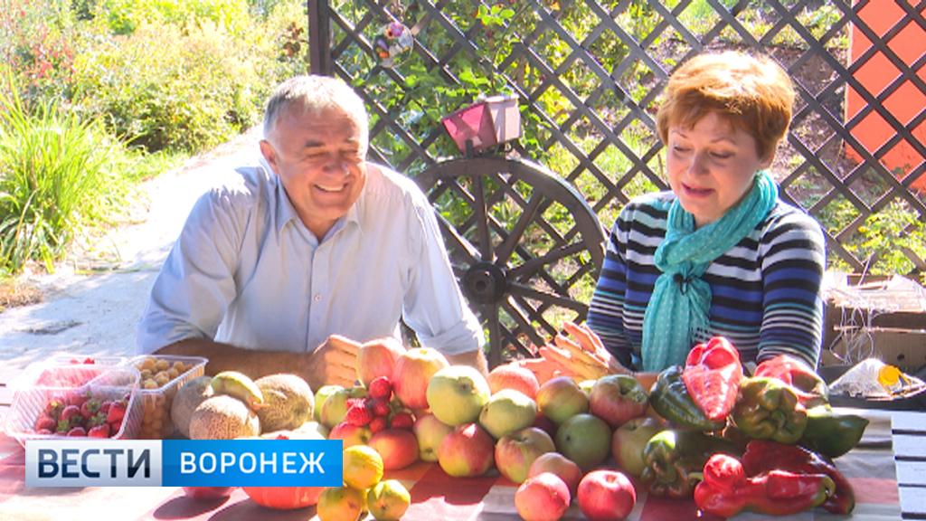 Воронежский фермер Александр Продан о разнообразии сортов фруктов и овощей