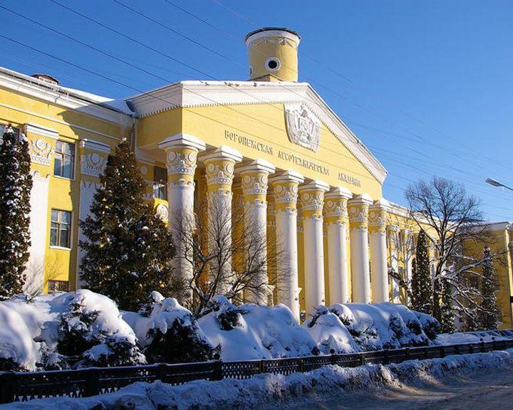Чем Воронежский лестех лучше МГИМО?
