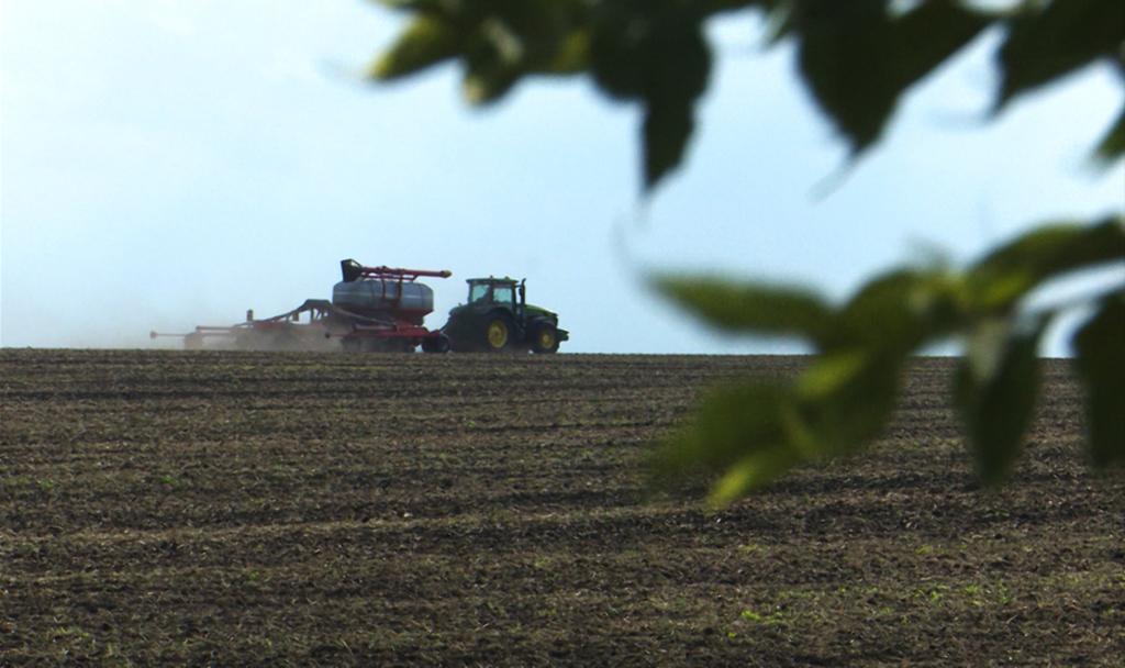 В Семилукском районе подводят итоги сельскохозяйственного года