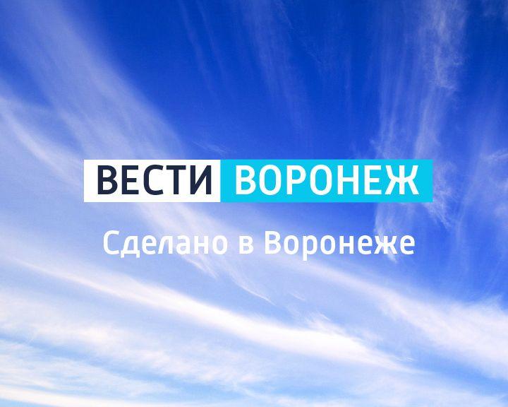 Сделано в Воронеже