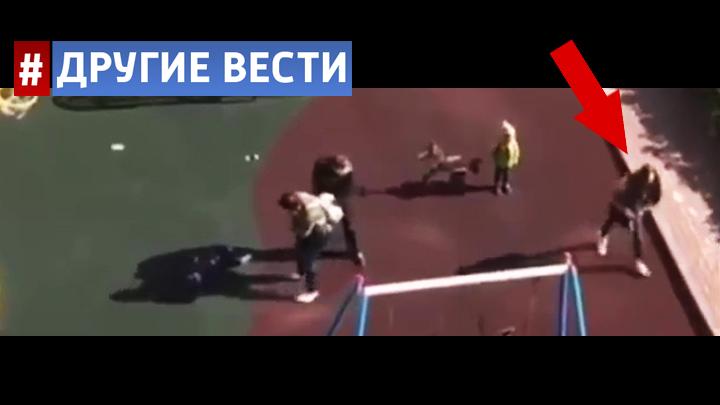 В Санкт-Петербурге дама с собачкой ударила ногой ребёнка и прыснула баллончиком в его мать