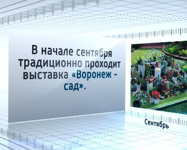 Календарь событий: В начале сентября традиционно проходит выставка «Воронеж-сад»