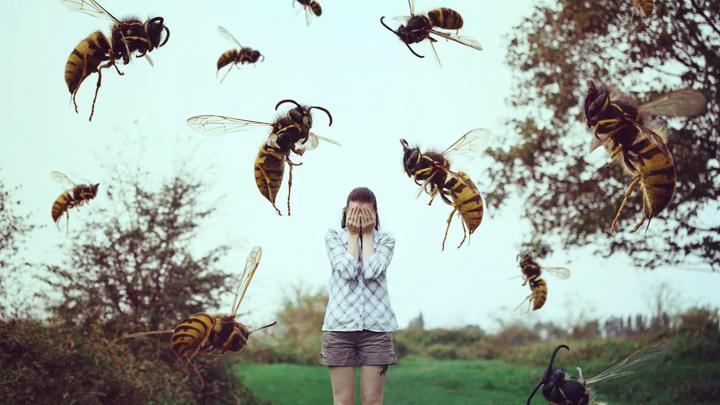 Как избежать страшных последствий инсектной аллергии