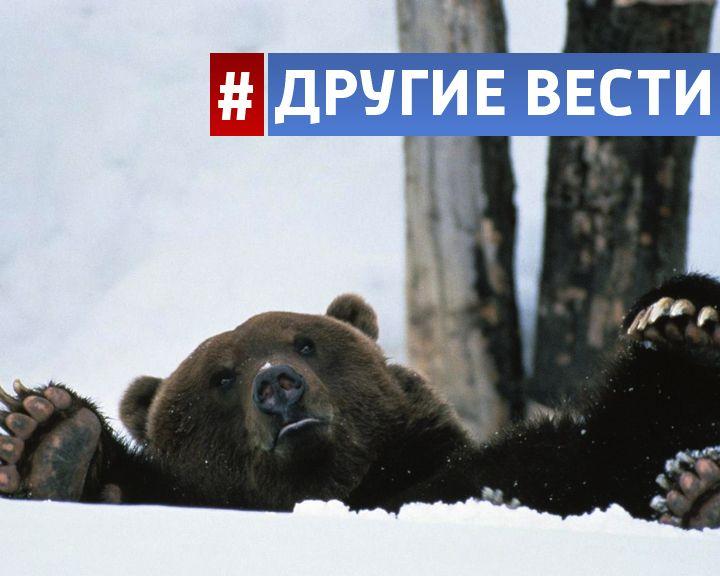 ВИДЕО: Российские школьники настолько суровы, что ходят в школу с топорами