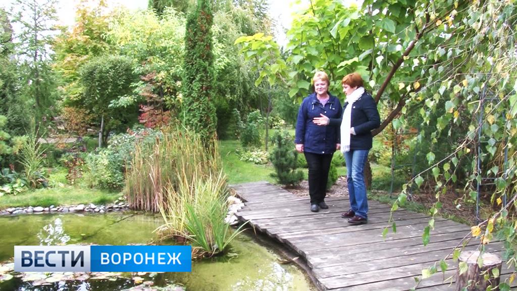 Ландшафтные хитрости от воронежского садовода-любителя