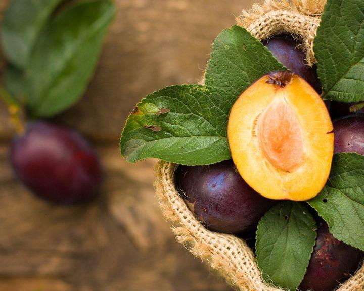 «Сезон забот» о томатах, винограде и сливах