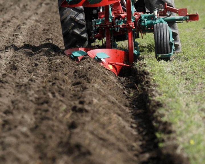В Воронежской области фермеры и владельцы ЛПХ могут получить землю бесплатно