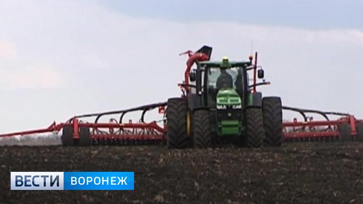 В Семилукском районе реализуют несколько инвестиционных проектов в сфере АПК