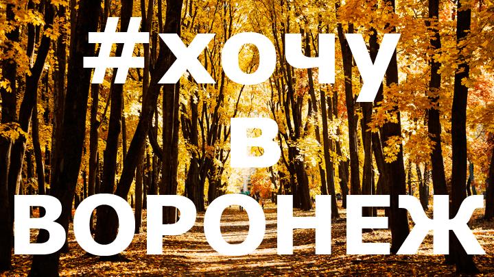 Прощай, осень! 11 самых тёплых осенних фото из социальных сетей в Воронежской области